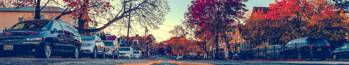 Leaves may be falling, but the real estate market is not