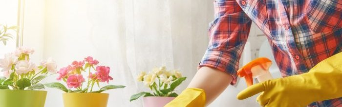 Spring Cleaning 101: Tips On Getting Your Home Ready For Sale